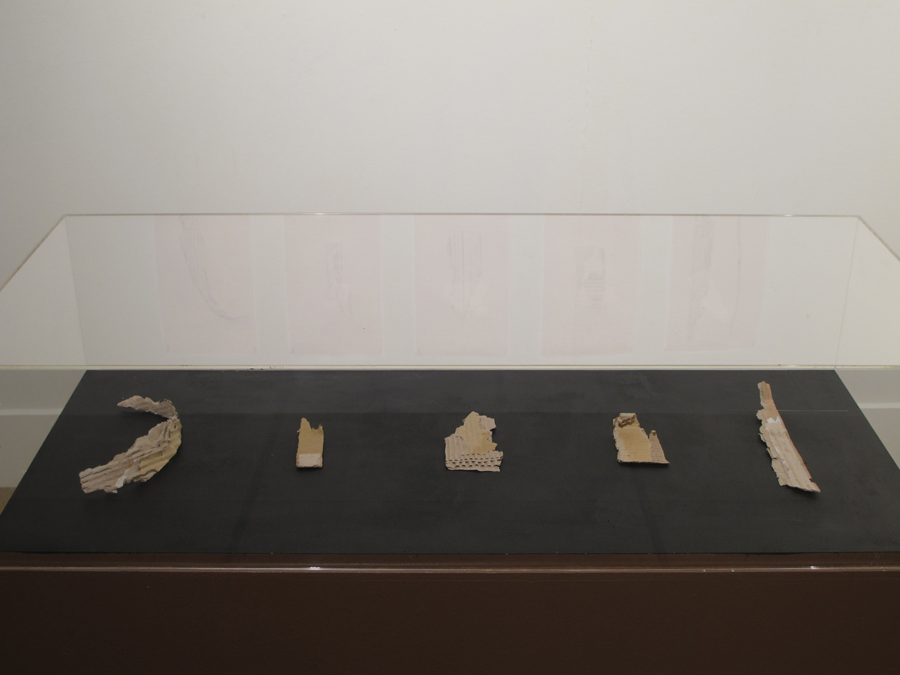 museum display with cardboard fragments