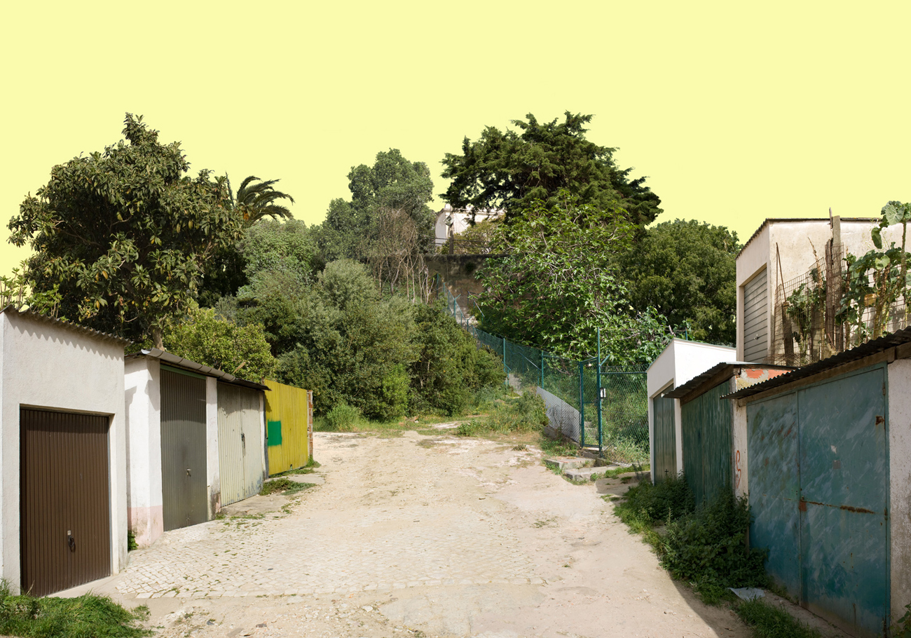 photomontage: composite of informal architecture in green overgrown landscape