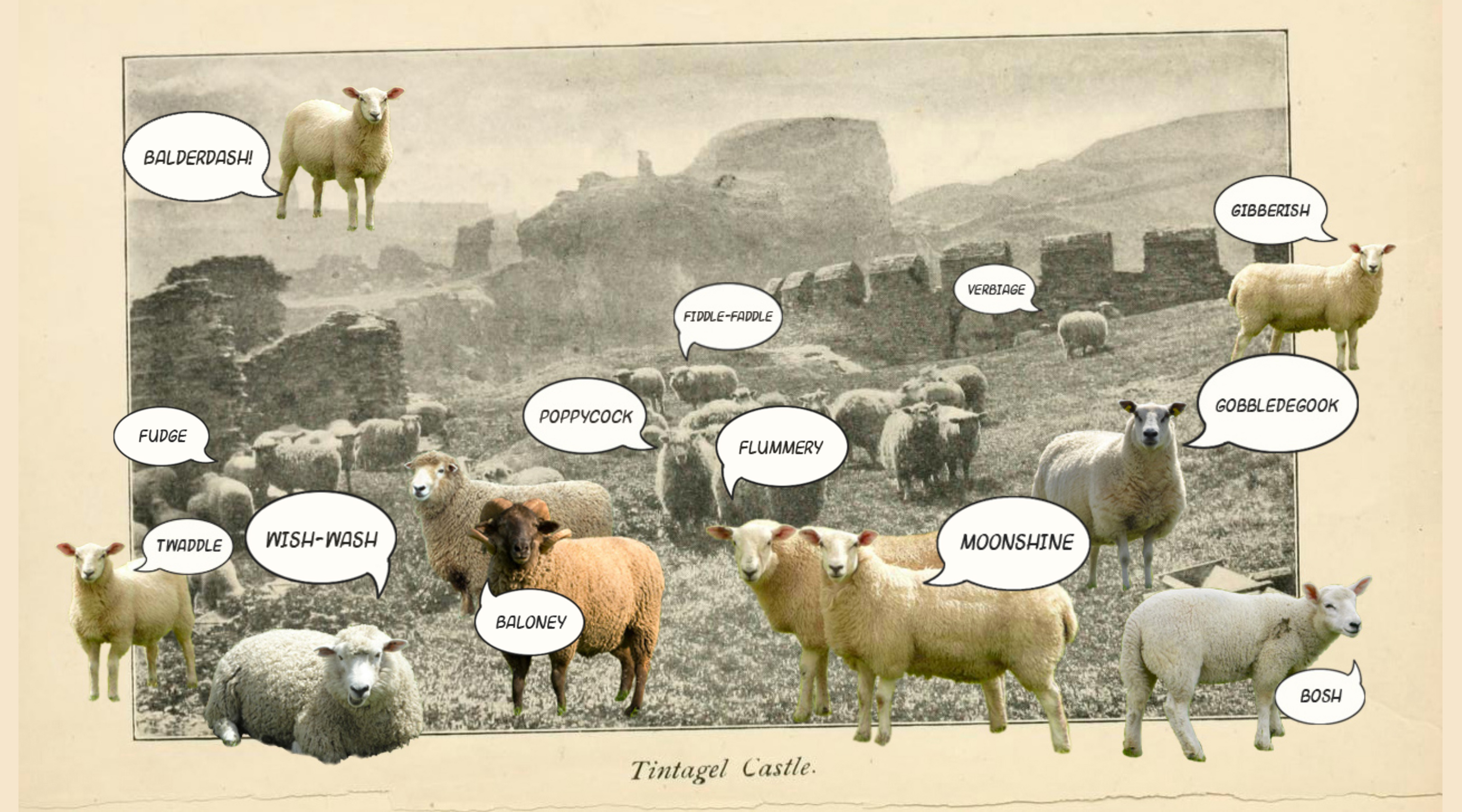 collage with photos of sheep and speech bubbles with slang synonyms of nonsense