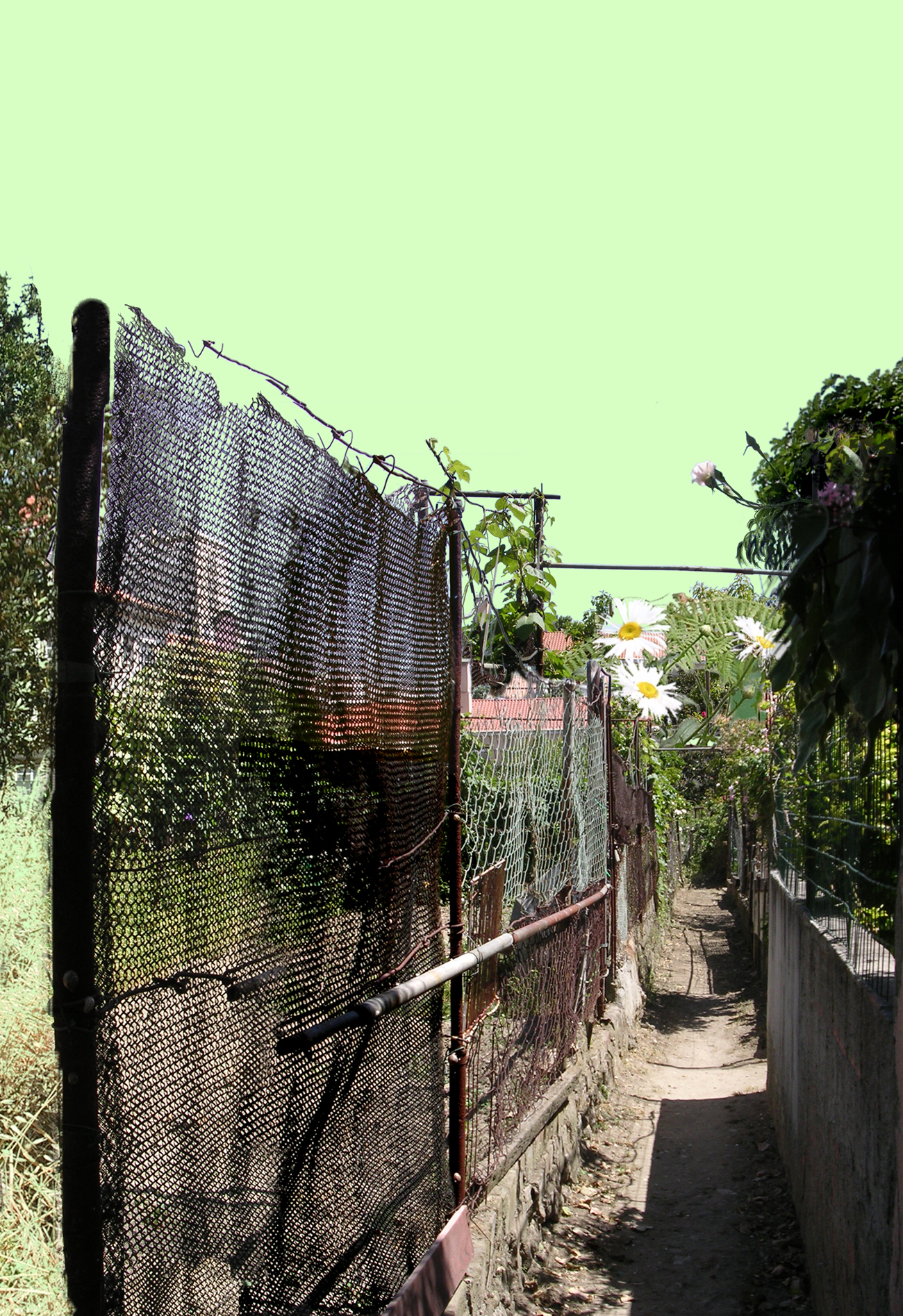 photomontage of suburban Lisbon landscape with green sky