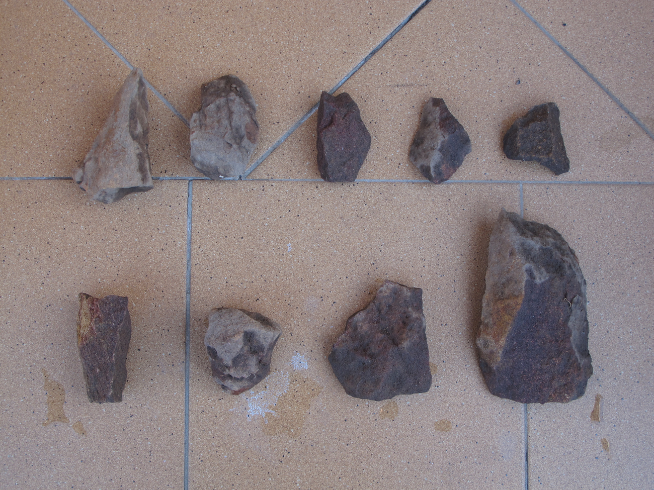 collection of sandstone fragments dug up from veggie patch