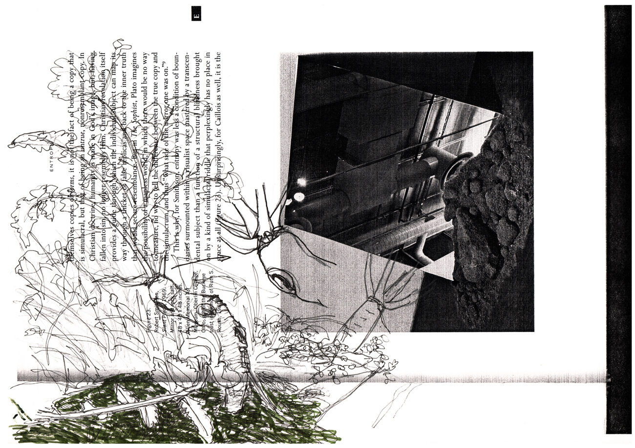 radish drawn on text and image of Robert Smithson's work
